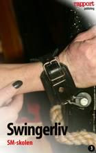 Erotik og sex: Swingerliv 3 af Rapport Publishing