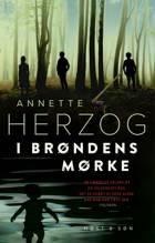 I brøndens mørke af Annette Herzog
