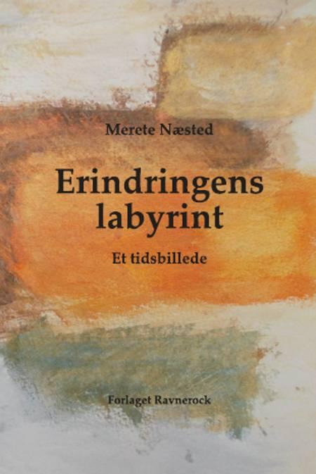 Erindringens labyrint af Merete Næsted
