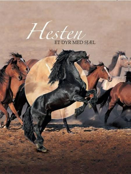Hesten - et dyr med sjæl