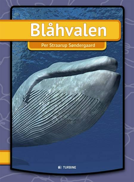 Blåhvalen af Per Straarup Søndergaard