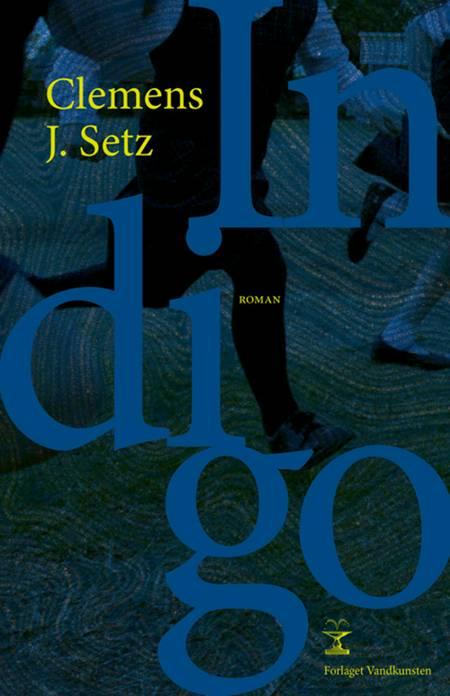 Indigo af Clemens J. Setz