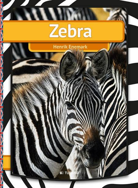 Zebra af Henrik Enemark