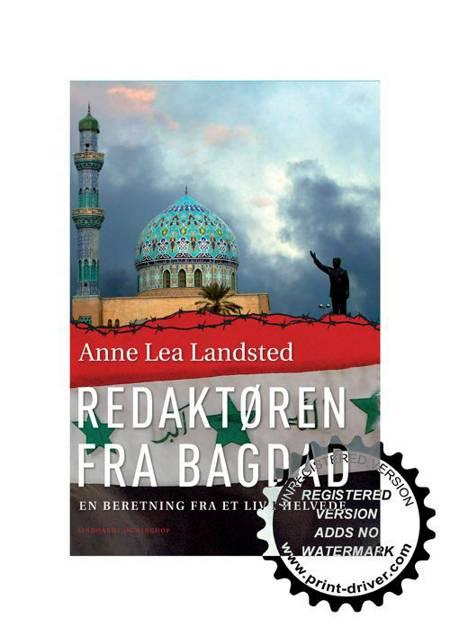 Redaktøren fra Bagdad af Anne Lea Landsted