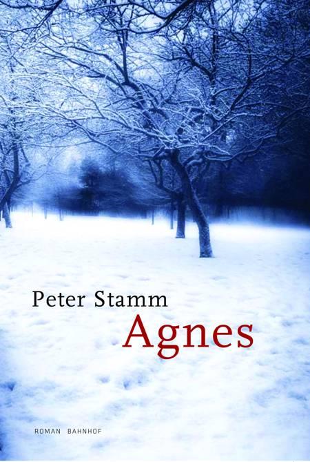 Agnes af Peter Stamm