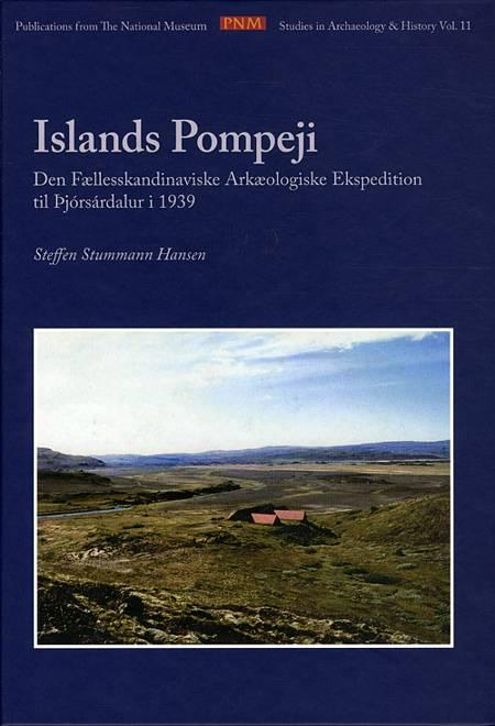 Islands Pompeji af Steffen Stummann Hansen