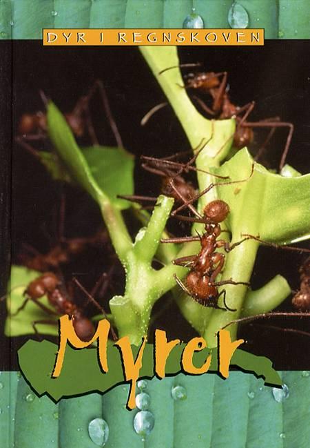 Myrer af Christy Steele