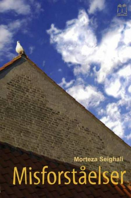 Misforståelser af Morteza Seighali