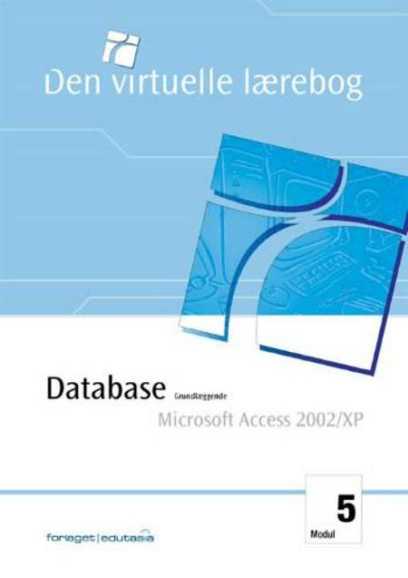 Database, grundlæggende - Microsoft Access 2002/XP af Lone Riemer Henningsen