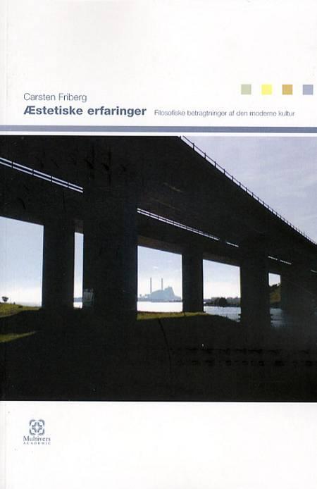 Æstetiske erfaringer af Carsten Friberg