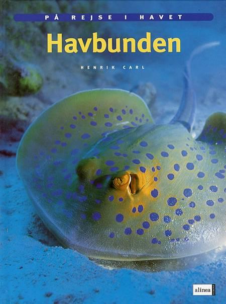Havbunden af Henrik Carl