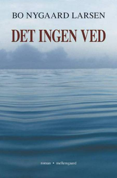 Det ingen ved af Bo Nygaard Larsen