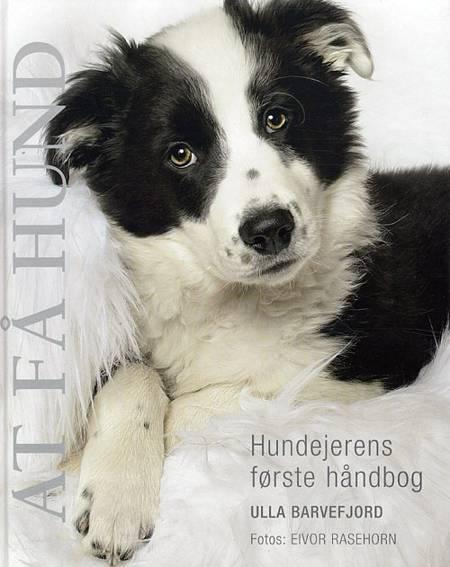 At få hund af Ulla Barvefjord