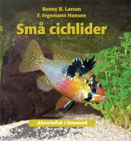 Små cichlider af Benny B. Larsen og Benny B. Larsen F. Ingemann Hansen