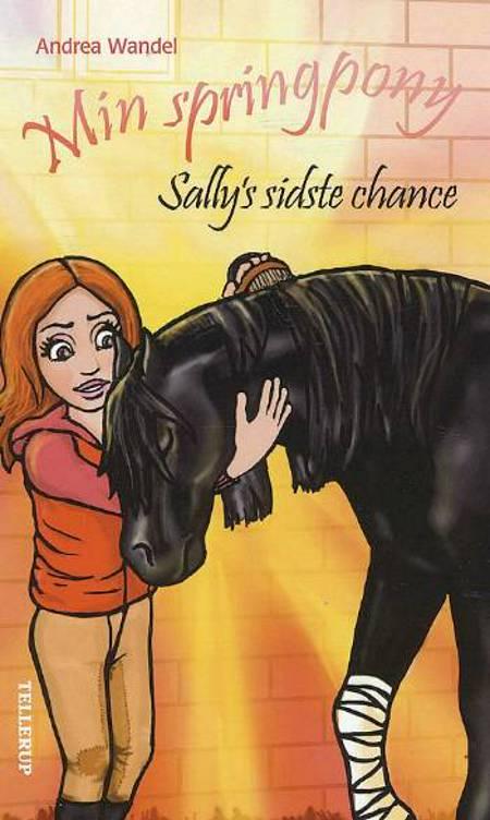 Sally's sidste chance af Andrea Wandel