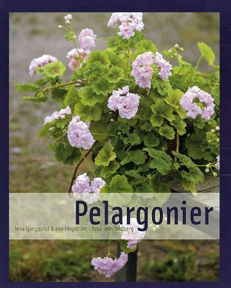 Pelargonier af Tingström og Ljungquist