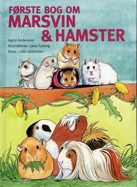 Første bog om marsvin & hamster af Ingrid Andersson