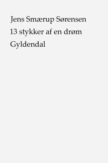 13 stykker af en drøm af Jens Smærup Sørensen