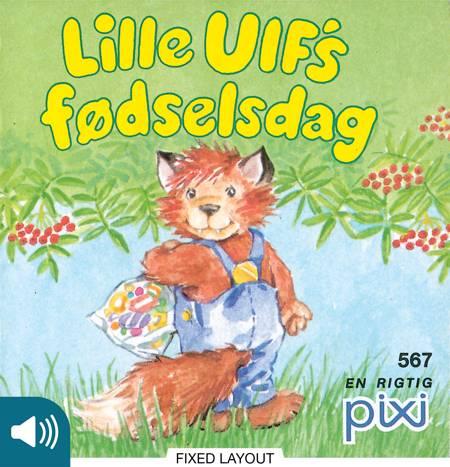 Lille Ulf's fødselsdag af Heidi Bruhn