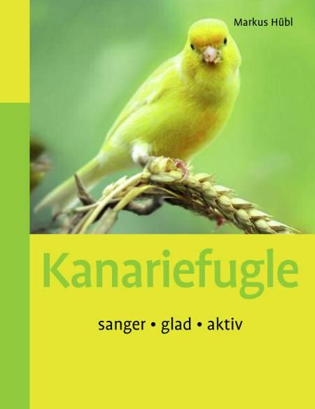 Kanariefugle af Markus Hübl og Markus Huübl
