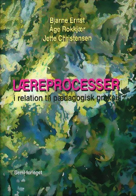 Læreprocesser i relation til pædagogisk praksis af Jette Christensen, Åge Rokkjær og Bjarne Ernst