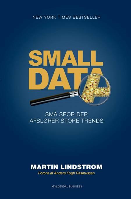 Small data af Martin Lindstrom