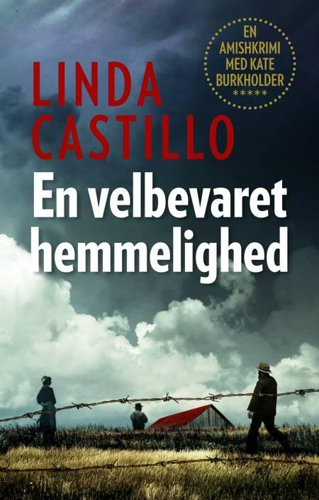 En velbevaret hemmelighed af Linda Castillo