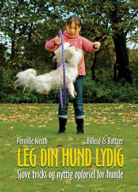 Leg din hund lydig af Pernille Westh