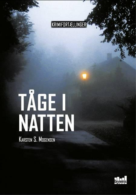 Tåge i natten af Karsten S. Mogensen