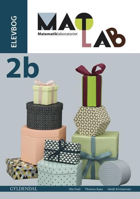 Matlab - matematiklaboratoriet 2b af Thomas Kaas, Ole Freil og Heidi Kristiansen