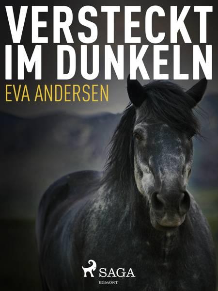 Versteckt im Dunkeln af Eva Andersen