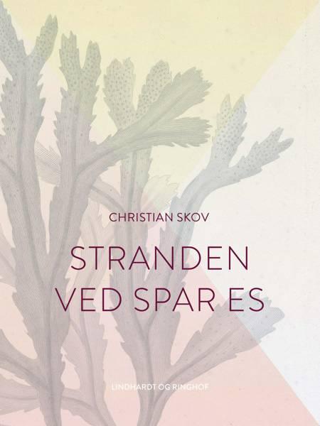Stranden ved Spar Es af Christian Skov