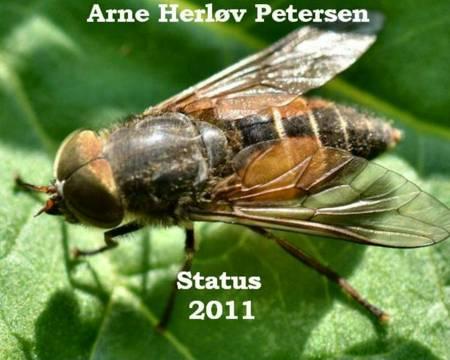Status 2011 af Arne Herløv Petersen