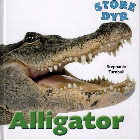 Alligator af Stephanie Turnbull