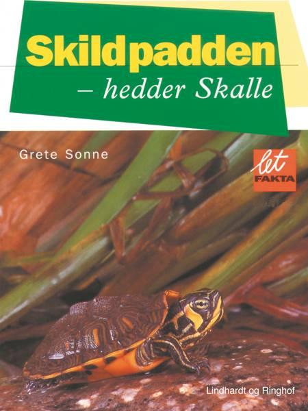 Skildpadden - hedder Skalle af Grete Sonne