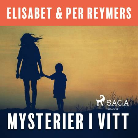Mysterier i vitt af Elisabet Och Per Reymers