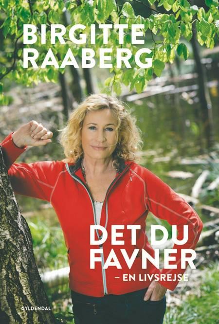 Det du favner af Birgitte Raaberg