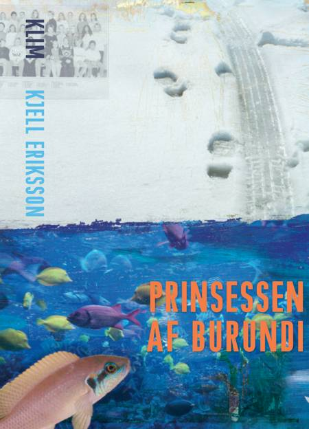 Prinsessen af Burundi af Kjell Eriksson