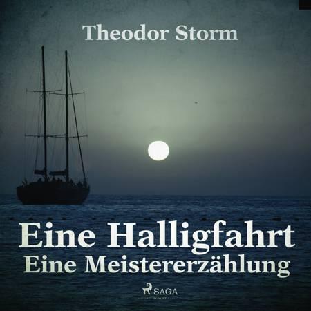 Eine Halligfahrt - Eine Meistererzählung af Theodor Storm