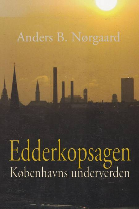 Edderkopsagen af Anders Børge Nørgaard