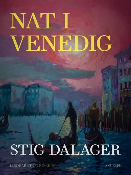 Nat i Venedig af Stig Dalager