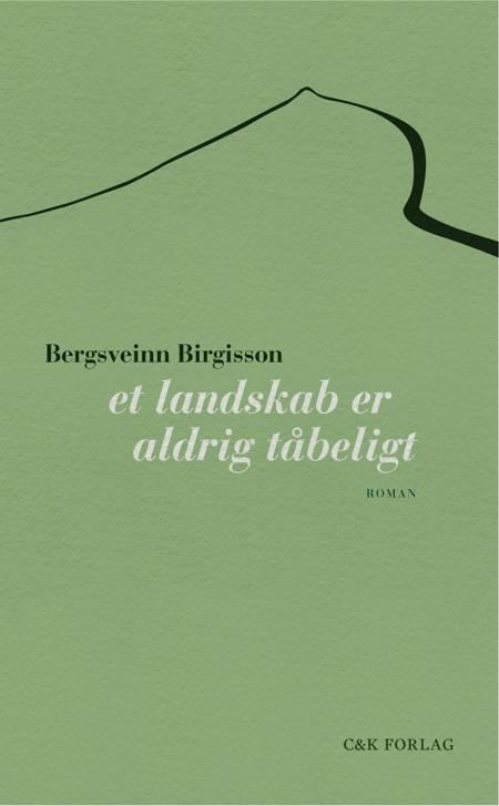Et landskab er aldrig tåbeligt af Bergsveinn Birgisson