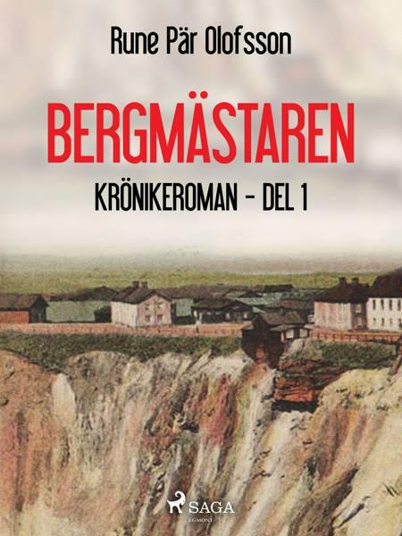Bergmästaren : krönikeroman, del 1 af Rune Pär Olofsson