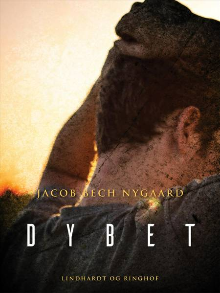Dybet af Jacob Bech Nygaard
