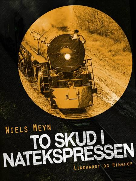 To skud i Natekspressen af Niels Meyn
