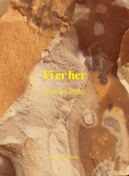 Vi er her af Liv Sejrbo Lidegaard
