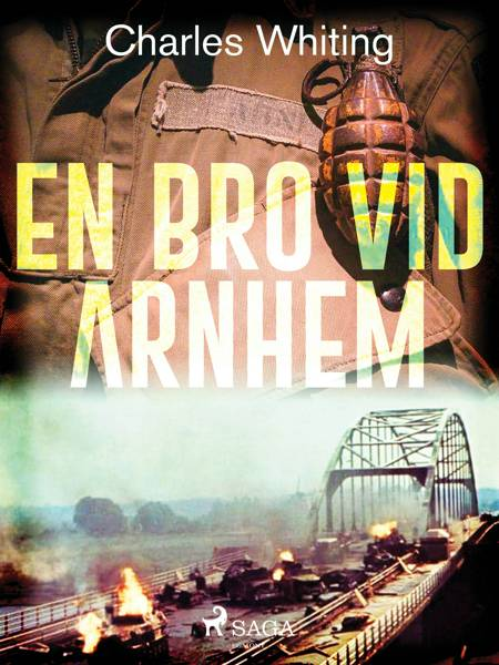 En bro vid Arnhem af Charles Whiting