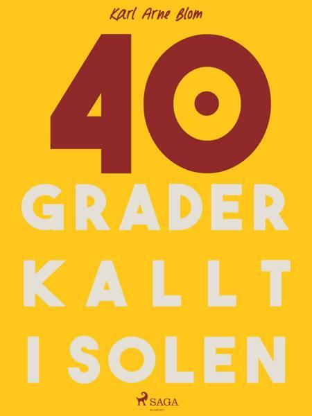 40 grader kallt i solen af Karl Arne Blom