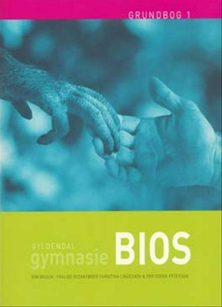 Gymnasie BIOS af Kim Bruun og Per Godsk Petersen