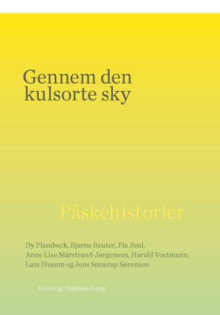 Gennem den kulsorte sky af Harald Voetmann, Bjarne Reuter, Pia Juul, Jens Smærup Sørensen og Dy Plambeck m.fl.